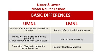 Pdf 4 upper lower motor neuron lesions ccuart Gallery
